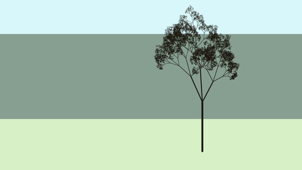 tree-20181212_9:15